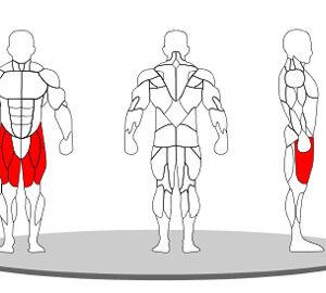demo leg extension - shinefitequipments.com